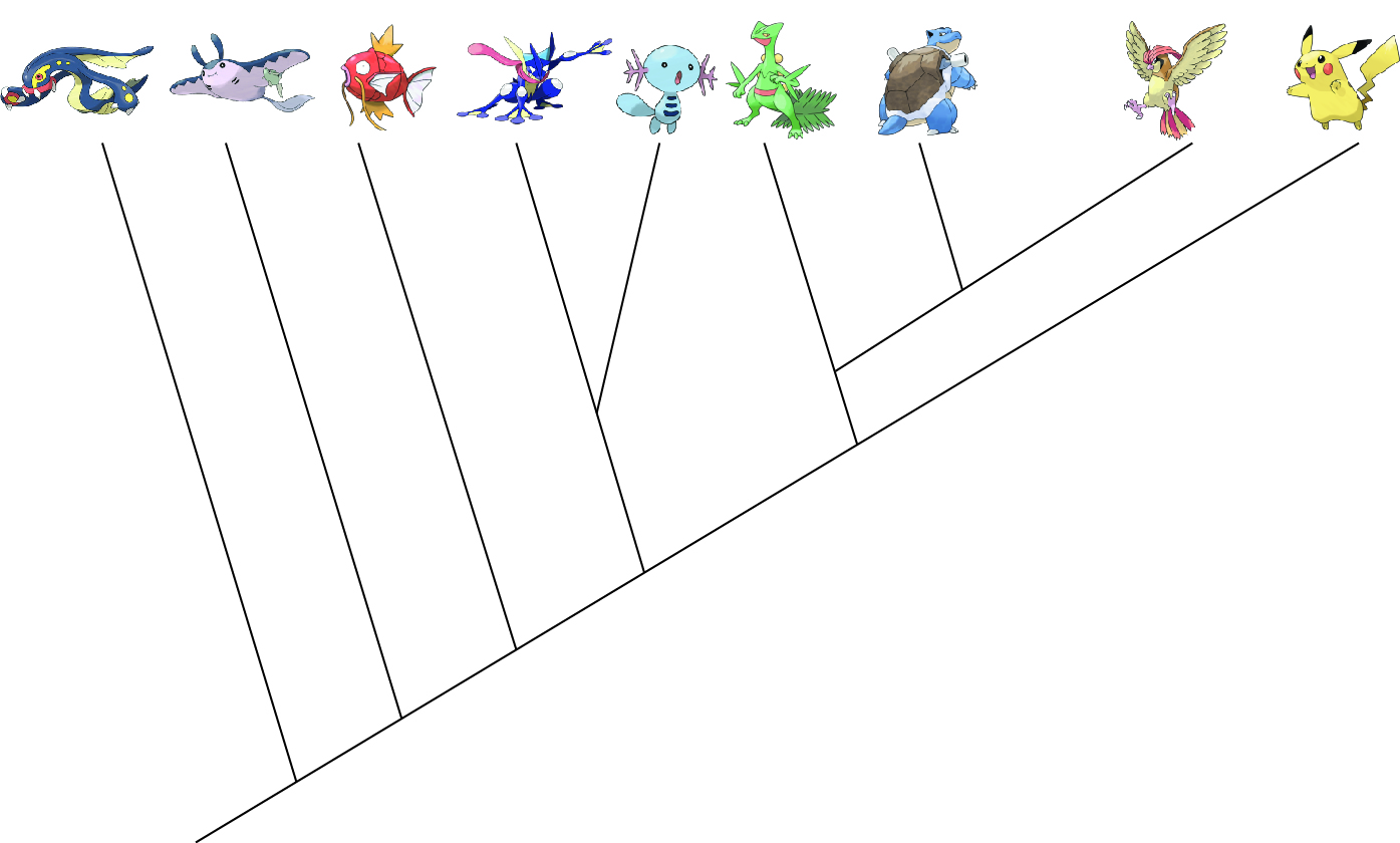 pokemon phylogenetics, vertebrates, pokemon